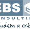 EBS Consulting
